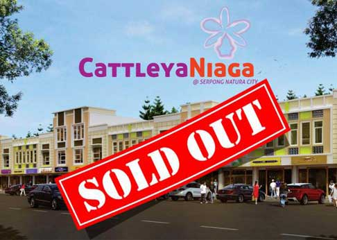 Cattleya Niaga 1