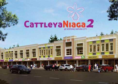 Cattleya Niaga 2